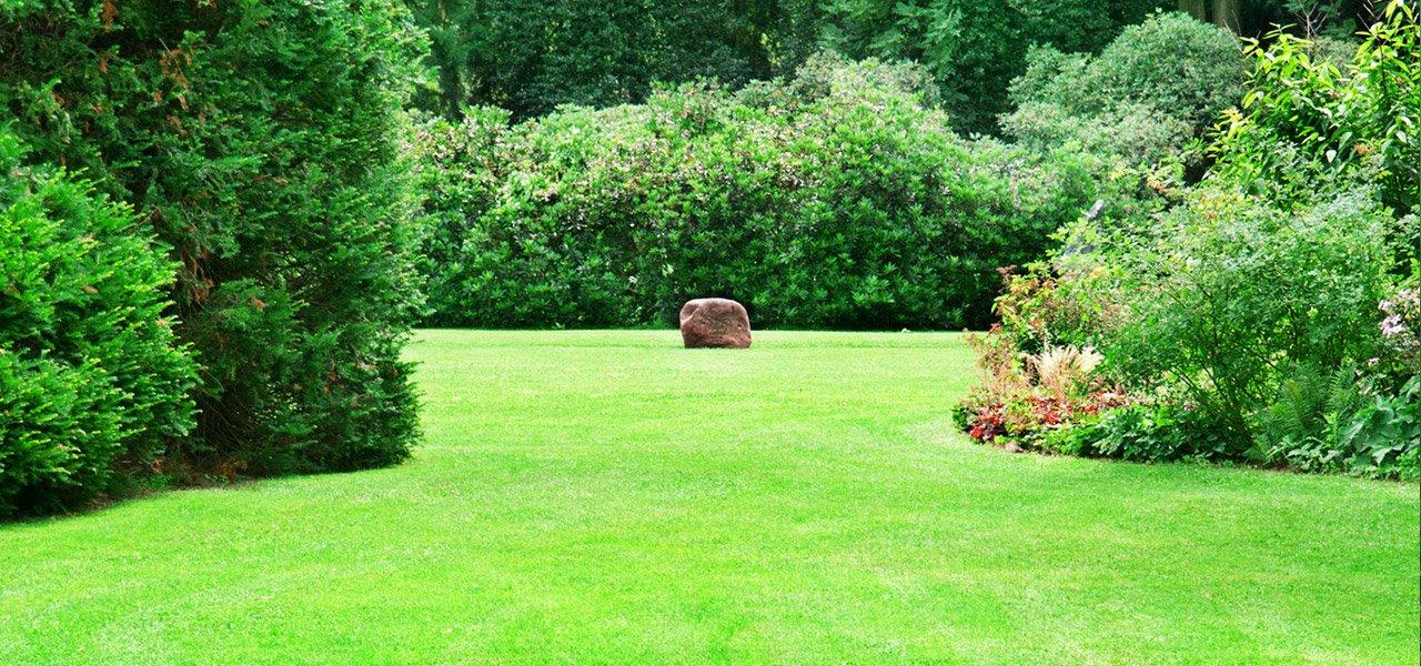 Gartenbau  Büscher Gartenbau & Landschaftsbau Solingen, Haan, Hilden